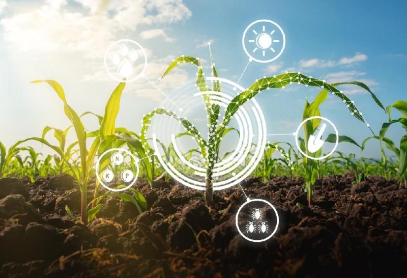 O foco foi debater iniciativas inovadoras e tecnológicas voltadas ao agro - Foto por: Divulgação