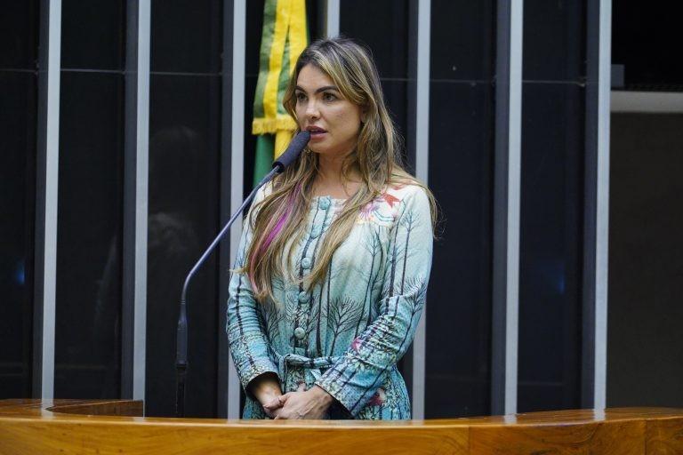 Paula Belmonte disse que proposta dá segurança jurídica, principalmente para o setor atacadista - (Foto: Pablo Valadares/Câmara dos Deputados)