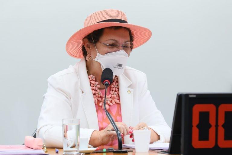 Tereza Nelma: população idosa LGBTI+ sofre dupla discriminação - (Foto: Najara Araujo/Câmara dos Deputados)