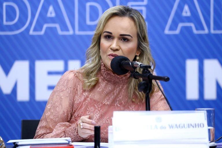 Daniela recomendou a aprovação do projeto com alterações - (Foto: Vinicius Loures/Câmara dos Deputados)