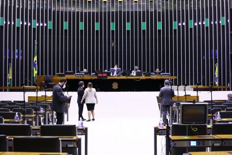 Sessão virtual do Plenário da Câmara dos Deputados - (Foto: Najara Araujo/Câmara dos Deputados)