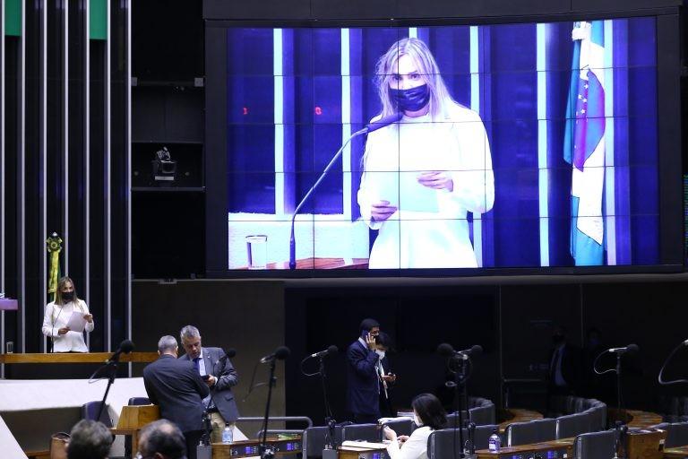 Deputada Celina Leão apresentou emenda ao projeto - (Foto: Cleia Viana/Câmara dos Deputados)