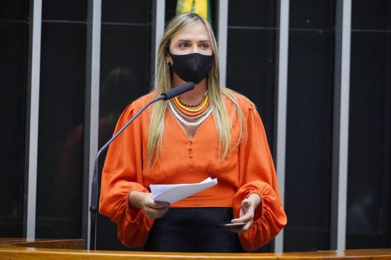 Celina Leão: medida fundamental para garantir segurança nos estádios - (Foto: Pablo Valadares/Câmara dos Deputados)