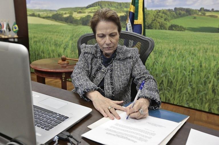 Ministra da Agricultura, Pecuária e Abastecimento, Tereza Cristina. - Foto por: Ministério da Agricultura