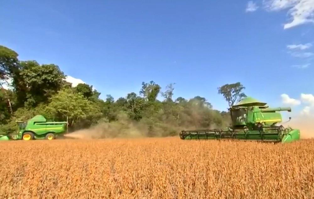 Apesar de colhida há mais de 90 dias, produtores aguardam bons preços para comercializar soja — Foto: Reprodução/TVCA