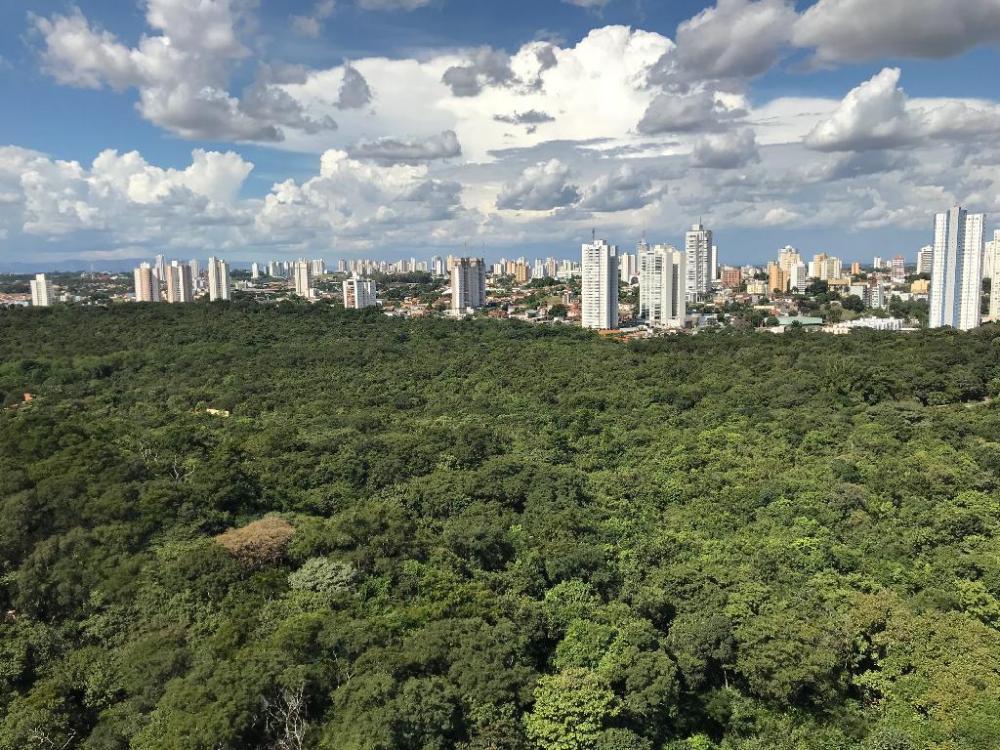 Vista área do Parque Mçae Bonifácia, em Cuiabá - Foto por: Nara Assis